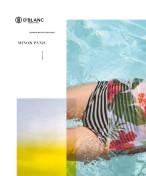 Surfing_Magazine_Swimsuit_Issue_2015.bak26